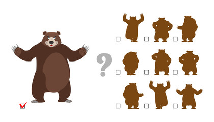 Find correct shadow. Childrens test. Big good bear. Kids educati