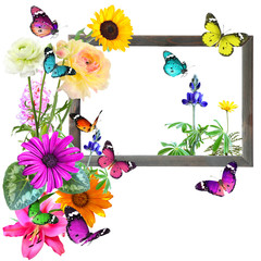 Colorful flowers and butterflies with blank wooden frame (copy space for photo, picture or text). Wildlife and art. Isolated on white