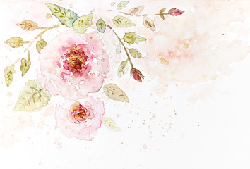 Vintage Watercolor Roses (hand drawn)