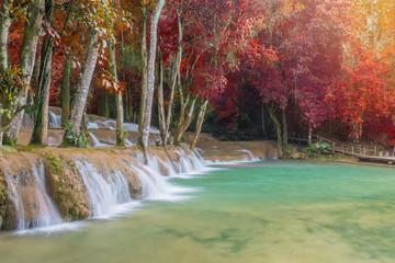 In de dag Olijf Waterfall in rain forest (Tad Sae Waterfalls at Luang prabang, L