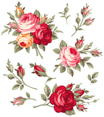 Vector vintage rose and bud collection. Antique bouquet of flowers.