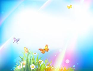 Light summer background