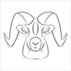 Animal Vector, Animal Illustration, Animal, Animal Head, Animal Face, Sheep