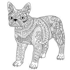 High detail patterned french bulldog.