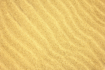 Sand Texture./Sand Texture