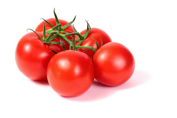 Wall Mural - bright colorful tomatoes on the gnarled branches. isolated on white background with shadows.