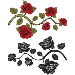 Flower branch roses. Set of red and black  branches. Floral print. Ornament with .  frame,  card, border  flowers, banner, decoration. Vector  background