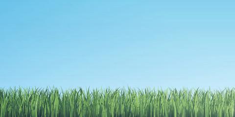 Green grass border on blue sky background. 3d illustration