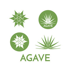 Agave plant green flower logo colorful vector illustration