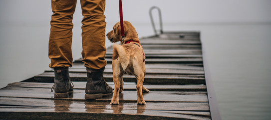 Dog and his owner standing on old wooden dock