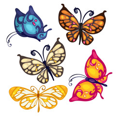 Five colorful beautiful butterfly, vector insect