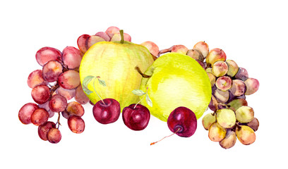 Watercolor fruits: apple, grape, cherry. Watercolour