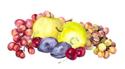 Watercolor fruits: apple, grape, cherry, plum. Watercolour