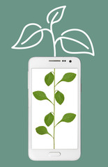 an incomplete part of a plant in smart phone screen and it's growth is completed outside the phone by drawing.