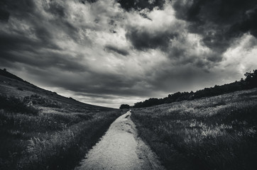 Printed roller blinds Gray traffic Black and white landscape of a road leading into a grassy field before a storm.