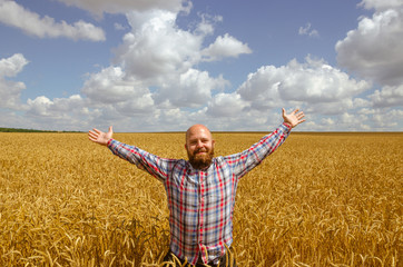 Happy hairless farmer with beard in ripe wheat field with handsup to a blue sky. great harvest.