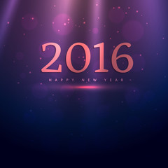 happy new year 2016 with rays