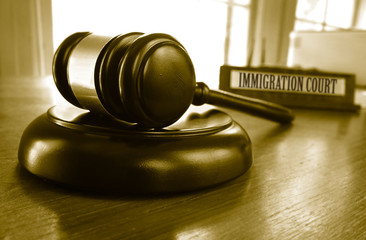 Immigration Court gavel