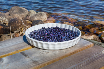 Blueberries on a plate outdoors.