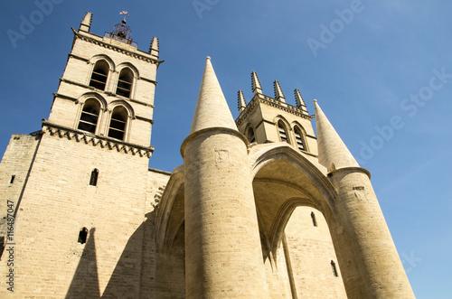Cath drale saint pierre de montpellier imagens e fotos de stock royalty free no - Cathedrale saint pierre de montpellier ...