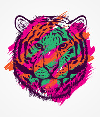 Colorful tiger sketch line