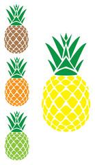 vector pineapple set