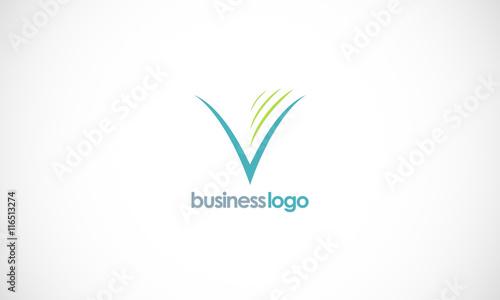 letter v company...V Company Logo