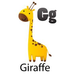 Alphabet letter G-Giraffe