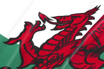 Welsh Flag close-up