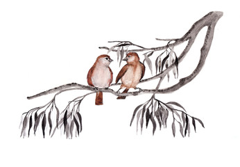 Sparrow birds sketch background. Hand drawn painting illustration.