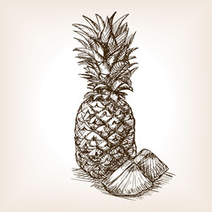 Pineapple fruit hand drawn sketch style vector