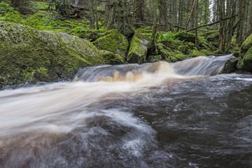 Printed kitchen splashbacks River river in a forest,Sumava - national park, Czech republic, Europe