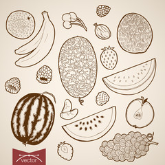 Engraving vintage hand drawn vector fruit food strawberry Sketch