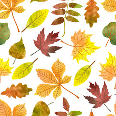 Watercolor autumn leaves seamless pattern. Vector colorful fall background with maple, chestnut, rowan, poplar leaves.