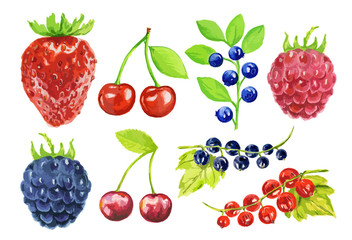 Watercolor berries set on white background. Fresh healthy set of different kind of berries as strawberry, blackberry, cherry and more.