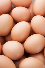 many fresh brown eggs for sale at