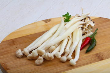 Japanese mushroom - enoki