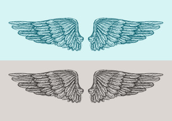 Hand drawn vintage angel wings. Sketch vector illustration