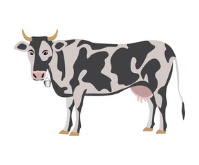 Milk cow on white background, vector illustration