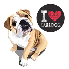 I Love Bulldog