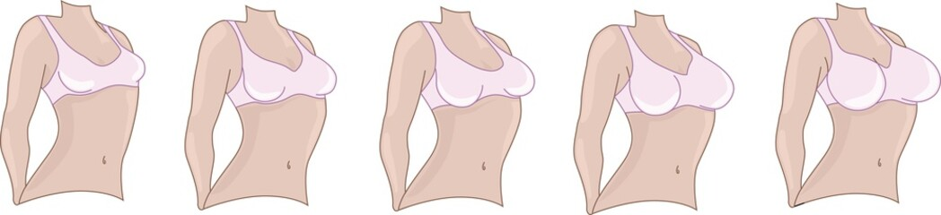 Woman breast size. Boobs sizes from small to big.