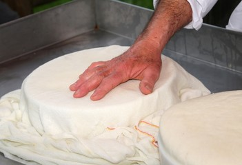 hands of an old and expert cheesemaker over the freshly cheese i