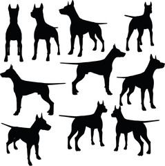 dog collection vector silhouette