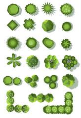 set of treetop symbols, for architectural or landscape design.vector
