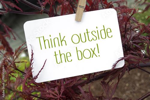 roter japanischer ahorn mit think outside the box. Black Bedroom Furniture Sets. Home Design Ideas