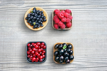 Set of berries: bilberry, raspberry, cranberry and currant. Top view, high resolution product. Harvest Concept