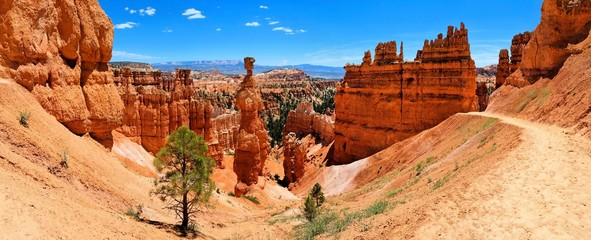 Bryce Canyon National Park panorama with famous Thor's Hammer hoodoo, Utah, USA Wall mural