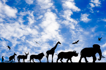 Silhouettes of animals on blue cloudy sky background