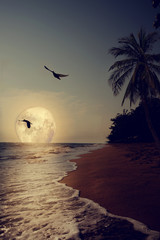 Fototapete - Beautiful fantasy tropical beach with Milky Way star in night skies, full moon - Retro style artwork with vintage color tone (Elements of this moon image furnished by NASA)