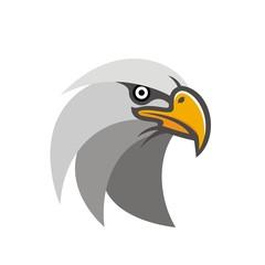 Head of an eagle illustration vector
